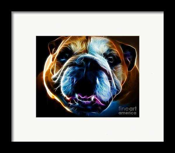 Animal Framed Print featuring the photograph English Bulldog - Electric by Wingsdomain Art and Photography