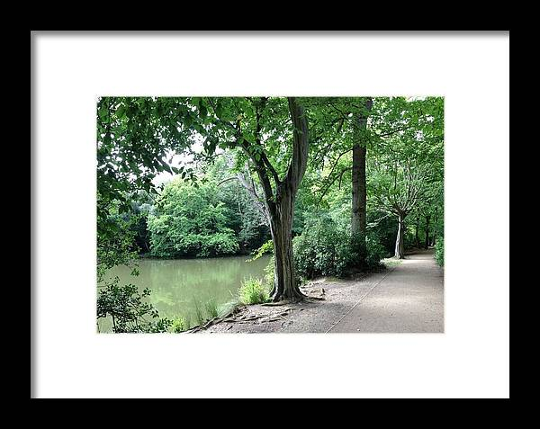 Landscape Framed Print featuring the photograph English Country Walk by Kate Gibson Oswald