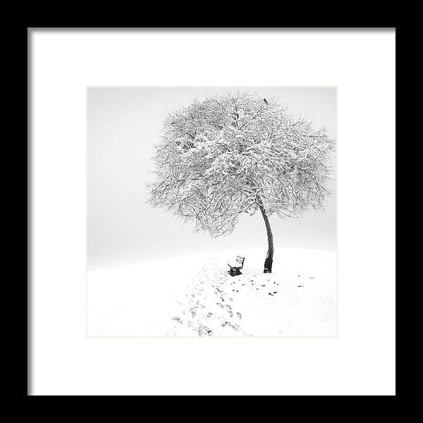 Winter Framed Print featuring the photograph Enjoy The Silence by Sherry Akrami