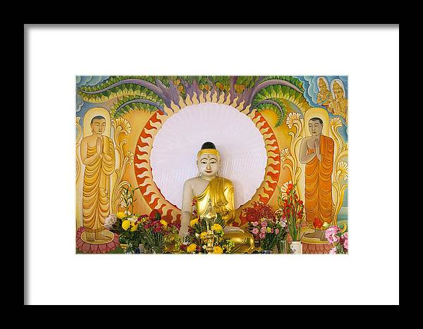 Buddha Framed Print featuring the photograph Enlightened Buddha Sitting Under The Bodhi Tree by Jit Lim