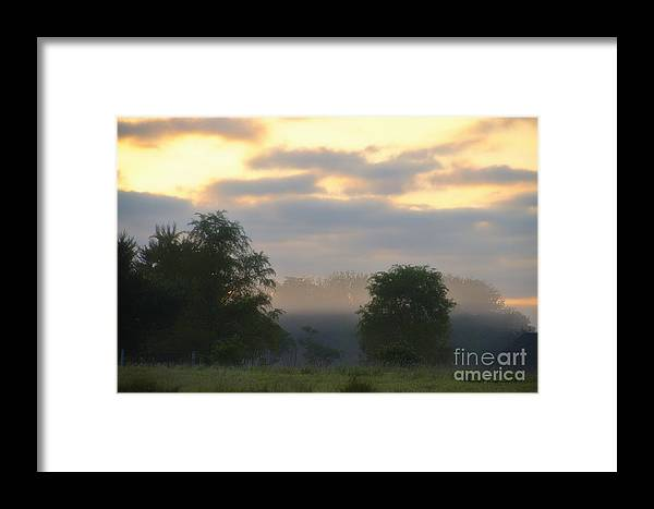 Agriculture Framed Print featuring the photograph Evaporation by Thomas Woolworth
