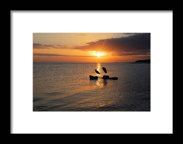 Pass Christian Ms Framed Print featuring the photograph Evening Glow by Teresa Parker