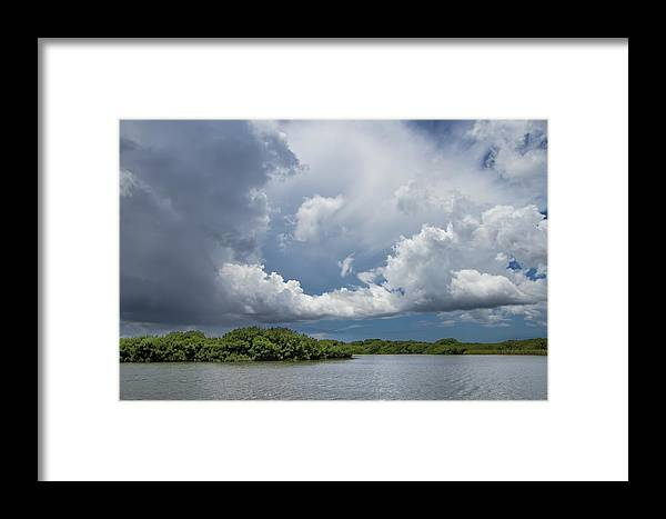 Everglades Framed Print featuring the photograph Everglades 0257 by Rudy Umans