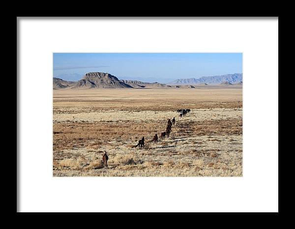 Horse Framed Print featuring the photograph Exodus by Gene Praag