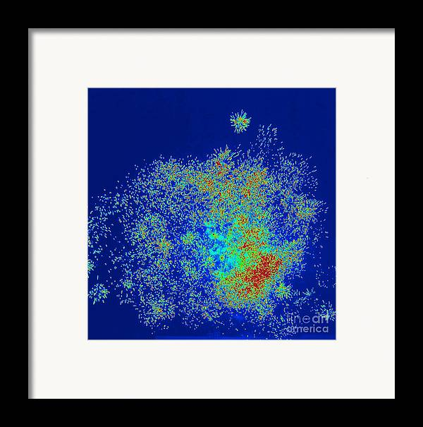 Art Framed Print featuring the painting Explosion by Shelia Kempf