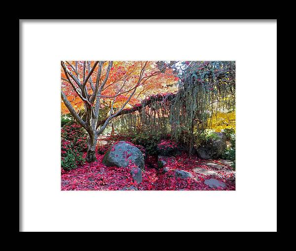 Autumn Framed Print featuring the photograph Exquisite Autumn by Cynthia Singleton