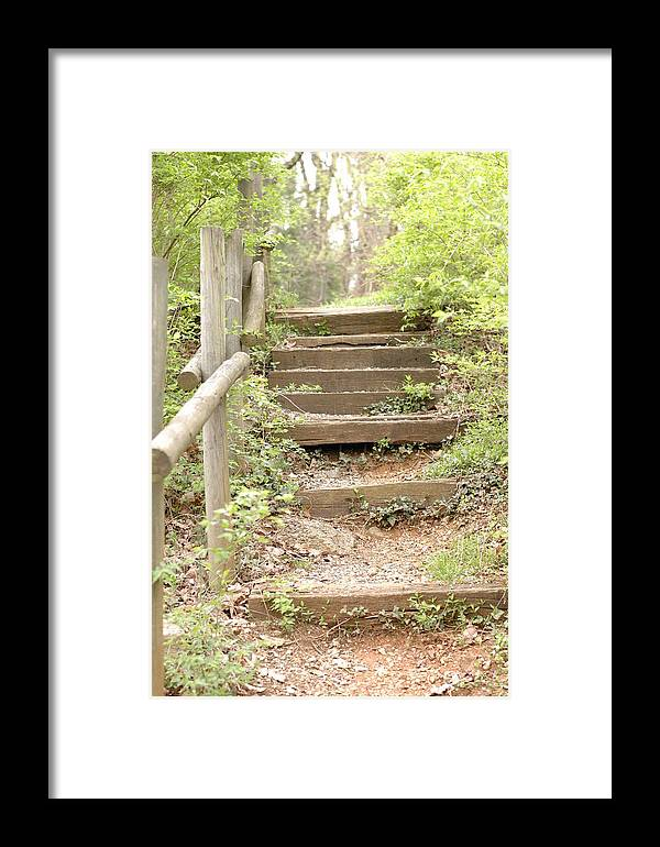 Green Framed Print featuring the photograph Fairytale Path by Meg Reinink