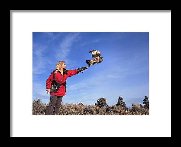 Woman Framed Print featuring the photograph Falcon Friend II by Buddy Mays