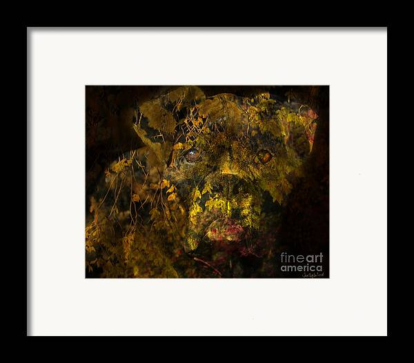 Boxer Dog Framed Print featuring the digital art Fall Boxer by Judy Wood