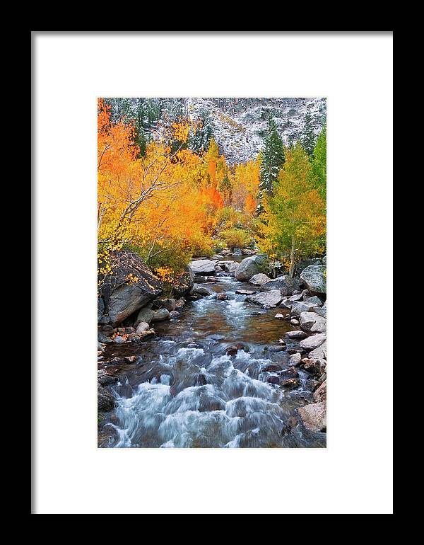 Aspen Framed Print featuring the photograph Fall Color Along Bishop Creek, Inyo by Russ Bishop