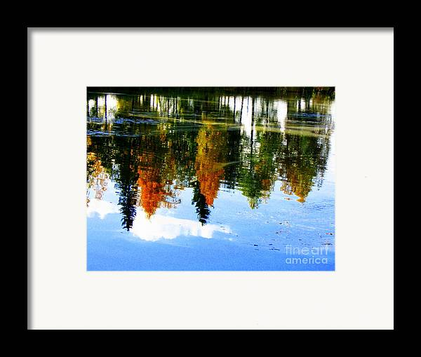 Autumn Canvas Prints Framed Print featuring the photograph Fall Colors by Pauli Hyvonen