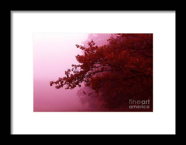 Landscape Framed Print featuring the photograph Fall Colors by Tatjana Senz