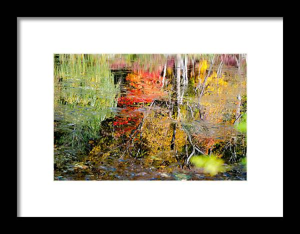 Water Framed Print featuring the photograph Fall Foliage Reflection 2 by Craig Levin