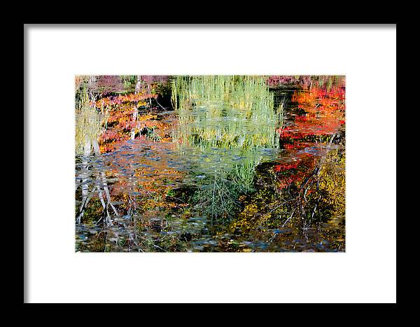 Water Framed Print featuring the photograph Fall Foliage Reflection 3 by Craig Levin