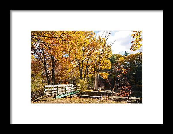 Fall Foliage Framed Print featuring the photograph Fall Foliage Vi by Michelle Velencia Deslauriers