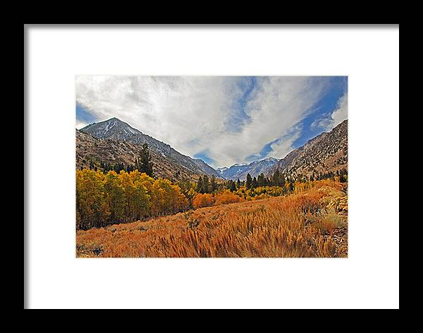 Fall Framed Print featuring the photograph Fall In Lundy Canyon by Lynn Bauer