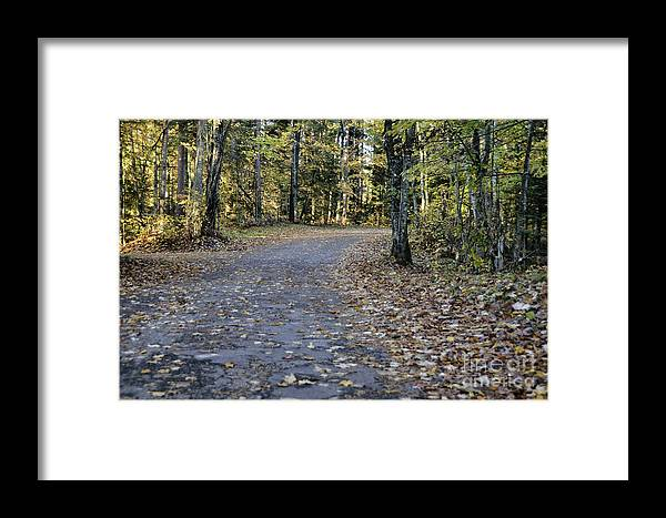 Wet Framed Print featuring the photograph Fall In The North Woods by Birgit Tyrrell