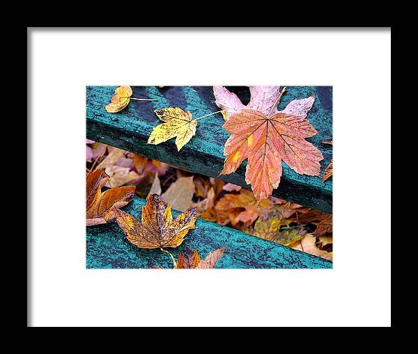 Fall Leaves Autumn Art Framed Print featuring the painting Fall Leaves Autumn Art by Olde Time Mercantile