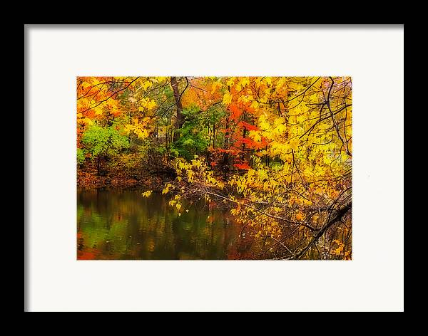 Nature Framed Print featuring the photograph Fall Reflection by Robert Mitchell