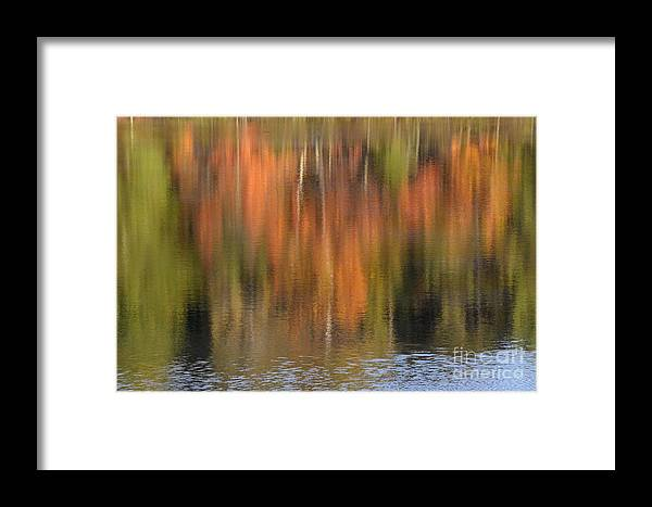 Autumn Framed Print featuring the photograph Fall Reflections by Birgit Tyrrell