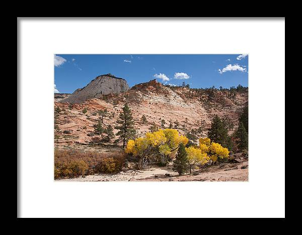 Nature Framed Print featuring the photograph Fall Season At Zion National Park by John M Bailey