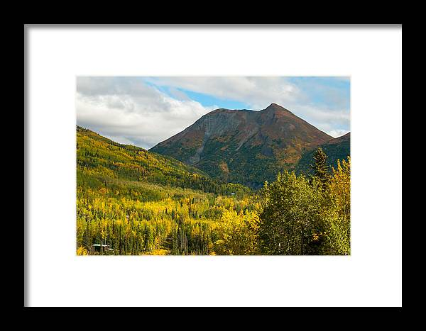 Alaska Framed Print featuring the photograph Fall by Stephen Smith