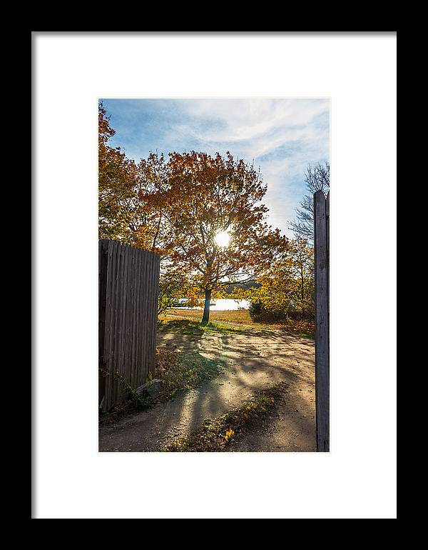 Fall Framed Print featuring the photograph Fall Through The Gate by Kirkodd Photography Of New England