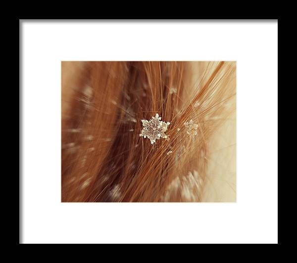 Winter Framed Print featuring the photograph Fallen Flake by Candice Trimble