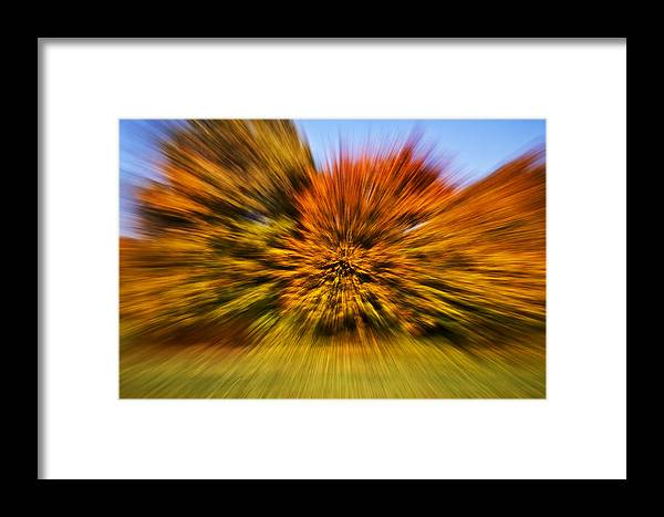 Fall Framed Print featuring the photograph Fallexplosion by Thomas Schlueter