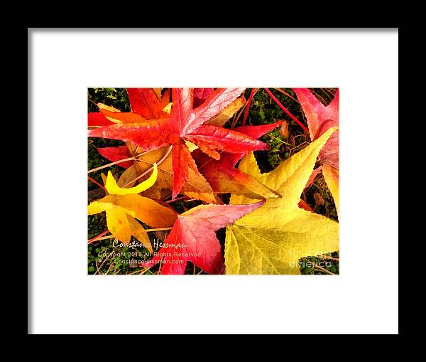 Leaves Framed Print featuring the painting Falling Colors Fall Leaves by Constance Hessman