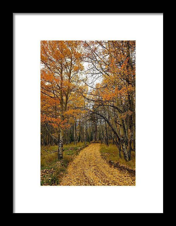 Falling Fast Framed Print featuring the photograph Falling Fast by Jeremy Rhoades