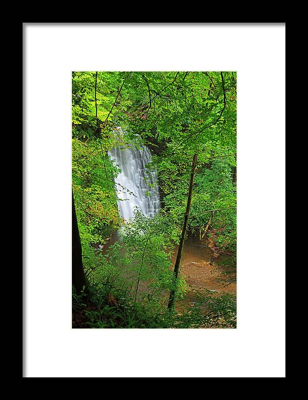 Scenics Framed Print featuring the photograph Falling Foss, North York Moors National by Louise Heusinkveld