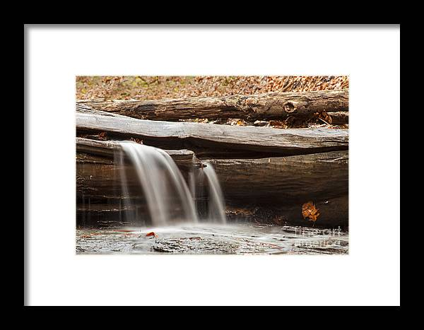 Waterfall Framed Print featuring the photograph Falls Through A Tree by Darleen Stry