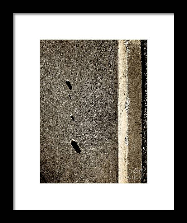 Abstract Framed Print featuring the photograph Family by Fei A