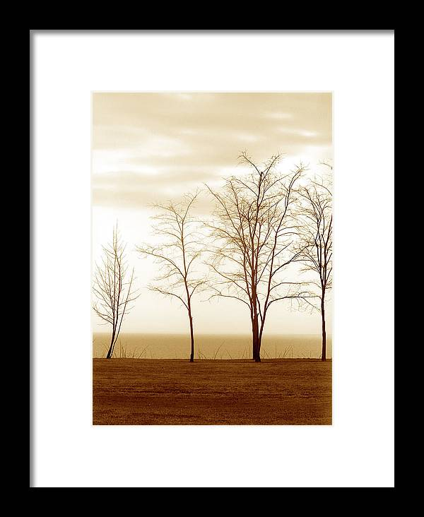 Landscapes Framed Print featuring the photograph Family by The Art Of Marilyn Ridoutt-Greene