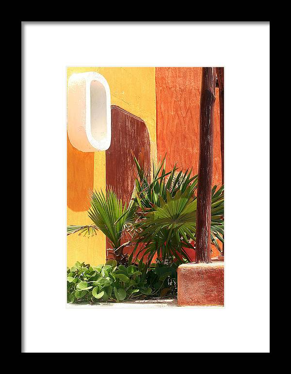 Palm Framed Print featuring the photograph Fan Palm On Patio by Jack Thomas