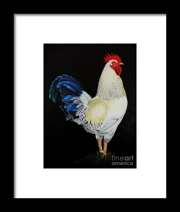 Fancy Tail Rooster Framed Print featuring the painting Fancy Tail Rooster by Jimmie Bartlett