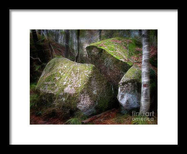 Wood Framed Print featuring the photograph Fantasy Woods by Lutz Baar