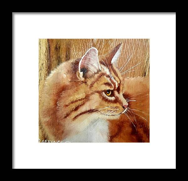 Cat Framed Print featuring the painting Farm Cat On Rustic Wood by Debbie LaFrance