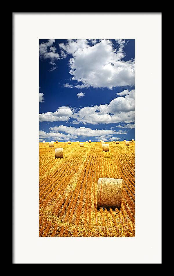 Agriculture Framed Print featuring the photograph Farm Field With Hay Bales In Saskatchewan by Elena Elisseeva
