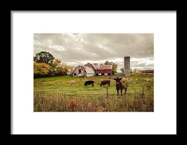 Farm Framed Print featuring the photograph Farm Living by Karen Varnas