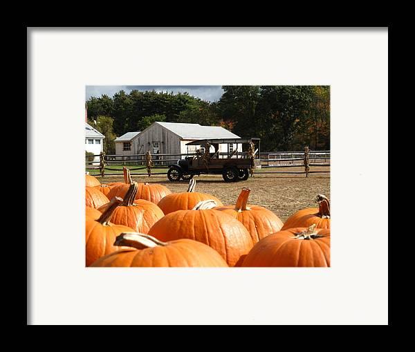 Pumpkin Framed Print featuring the photograph Farm Stand Pumpkins by Barbara McDevitt
