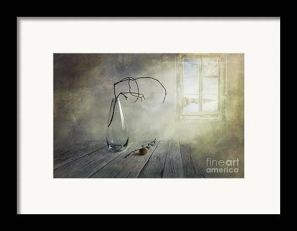 Art Framed Print featuring the photograph Feel A Little Spring by Veikko Suikkanen