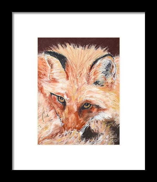 Fox Framed Print featuring the drawing Feeling Foxy by Cori Solomon