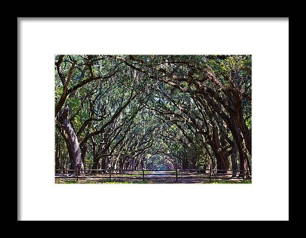 Savannah Framed Print featuring the photograph Fence And Wormsloe In Savannah by John McGraw