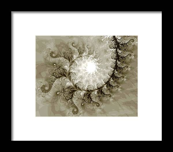 Fine Art Framed Print featuring the photograph Fern by Kevin Trow