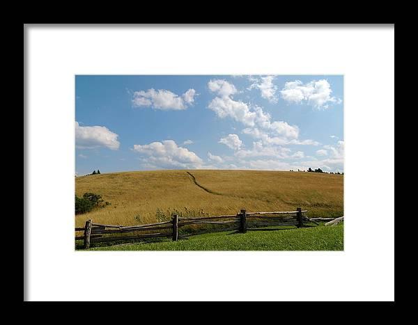 Field Framed Print featuring the photograph Field Of Gold by Irina Kartasheva