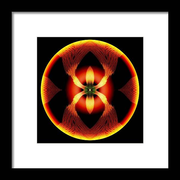 Abstract Framed Print featuring the digital art Fire Ant by Visual Artist Frank Bonilla