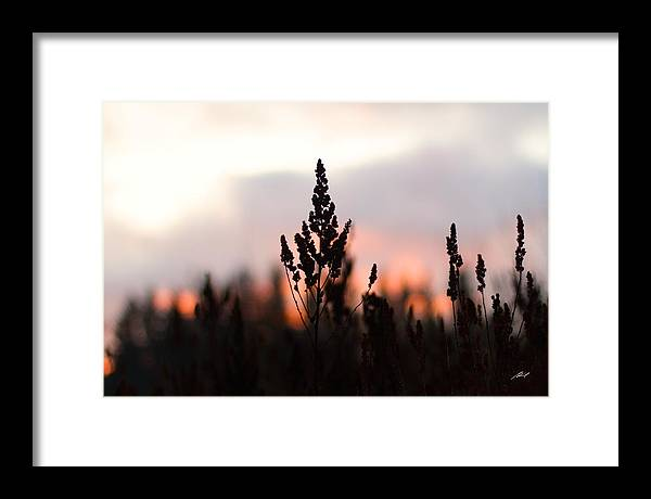 Sunset Framed Print featuring the photograph Fire Horizon by Edward Pride