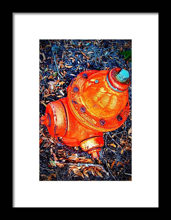 Hydrant Framed Print featuring the photograph Fire Hydrant by Heart On Sleeve ART